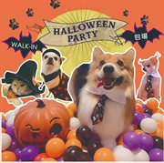 Halloween Party 萬聖節 寵物派對★逢星期五★